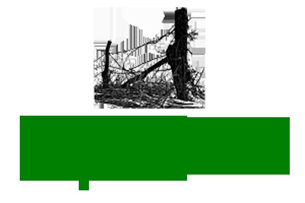 WV SORO Update